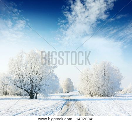 Frozen trees in field with road and blue sky with clouds