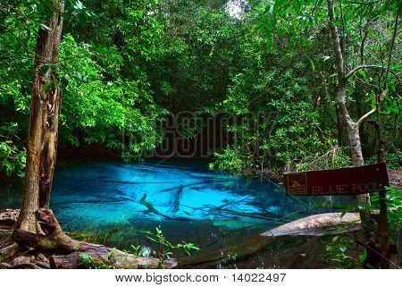 Small lake in tropical forest with clear blue water