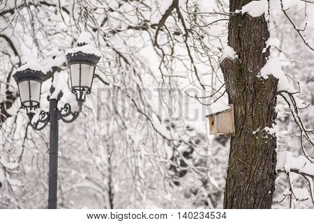 Wooden bird house on the tree during winter