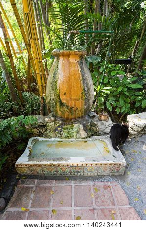 KEY WEST FLORIDA USA - MAY 03 2016: Former urinal in the garden of the Ernest Hemingway House in Key West in Florida. It is now used by cats to drink.