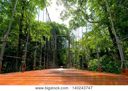 rope bridge or suspension bridge in forest at Khao Kradong Forest Park in Buriram ProvinceTHAILAND.