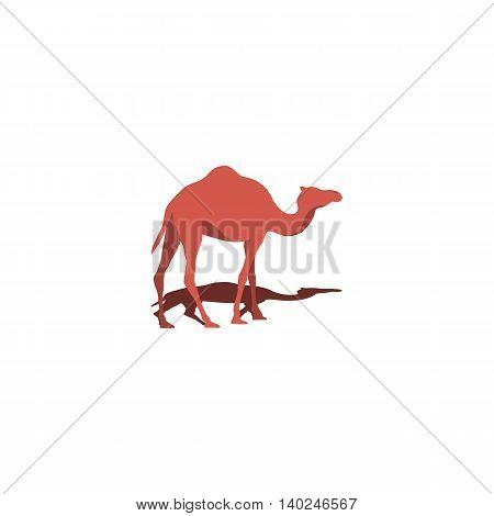 Camel and shadow. Animal logo.  Web element icon. Vector illustration