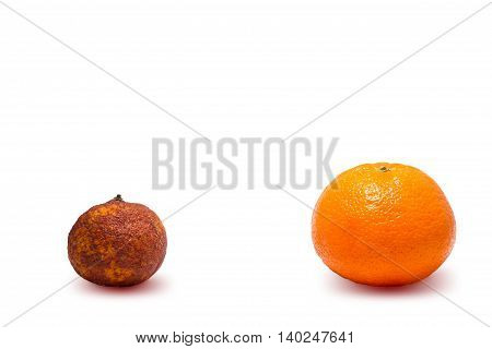Two Modified Oranges