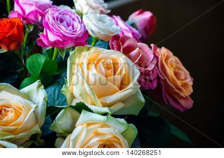 Colorful bunch of different roses on a dark background