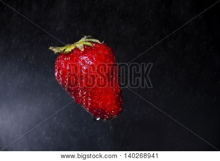 Single fresh strawberry isolated on black background
