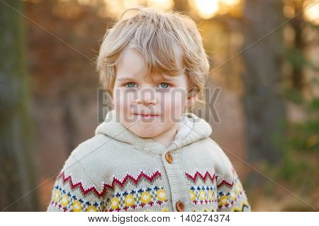 Portrait of beautiful little caucasian boy of 2 , outdoors. Evening light.
