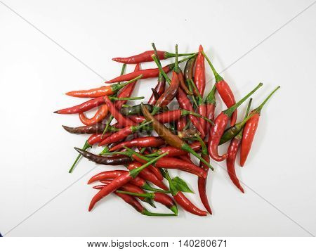 chilli food herb Medicinal plants seasoning ingredient flavouring spice