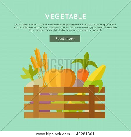 Vegetables vector banner. Flat design. Illustration of wooden box full of fresh farm plants on color background for web design. Farming concept with wheat, pumpkin, corn, beets, carrot