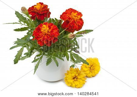 Dark Red Marigolds Flowers In A Ceramic Vase, Flowerpot And Small Summer Chrysanthemums. Isolated On