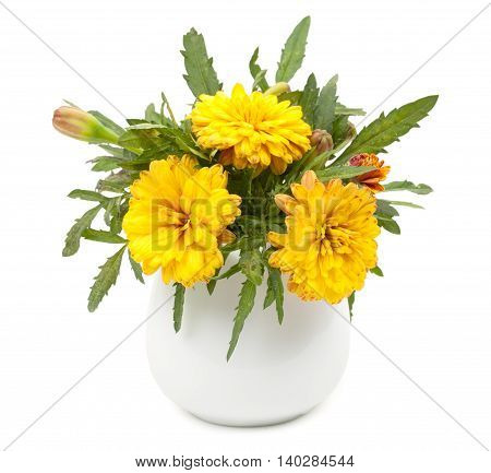 Small Summer Yellow Chrysanthemums In A Ceramic Vase, Flowerpot. Isolated On White Background, Close