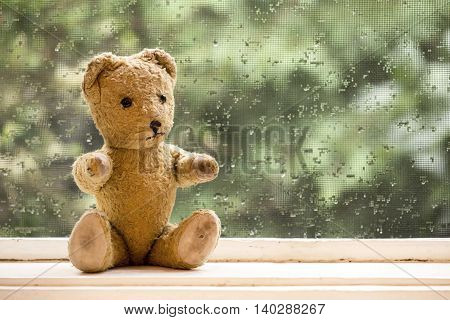 Cute old vintage toy bear sitting in the window