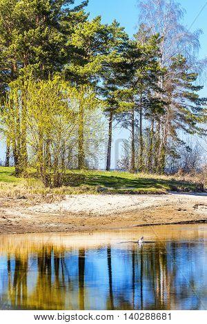 Spring landscape on the river. The river Ob Novosibirsk oblast Siberia Russia