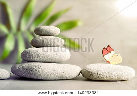 Stones balance and green palm on grey background.