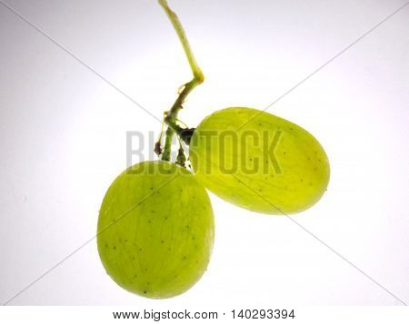 Isolated big grapes berries on white background