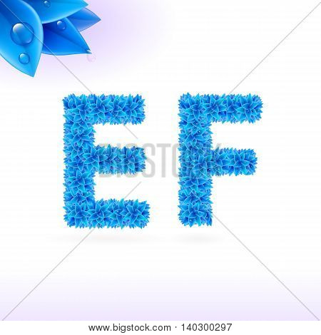 Sans serif font with blue leaf decoration on white background. E and F letters