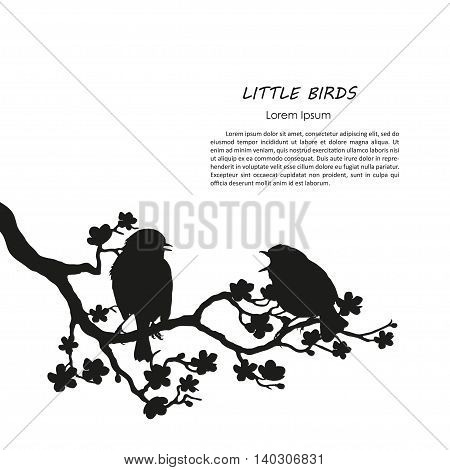 Silhouette of two birds sitting on a flowering branch. Vector illustration