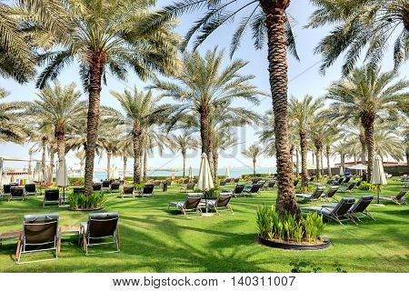 Sunbeds on the green lawn and palm tree shadows in luxury hotel Dubai UAE