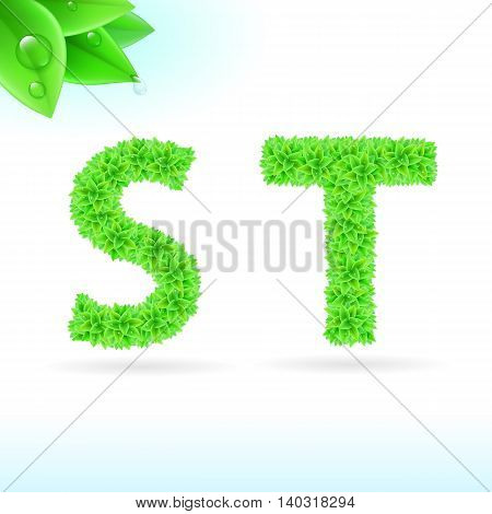 Sans serif font with green leaf decoration on white background. S and T letters