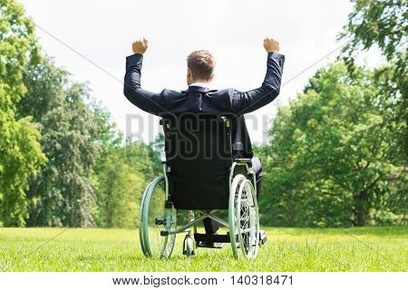 Rear View Of Young Disabled Man On Wheelchair With Arm Raised In Park