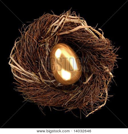 Golden egg inside a nest on black background