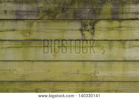 Green Algae Covered Wooden Wall background image