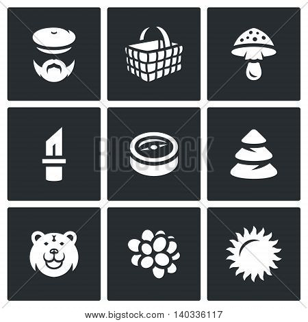Mushroomer, Basket, Mushroom, Tool, Orientation, Forest, Predator, Fruit, Weather.
