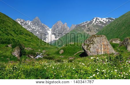 Summer landscape with river, big stones and mountain snow. Georgia.