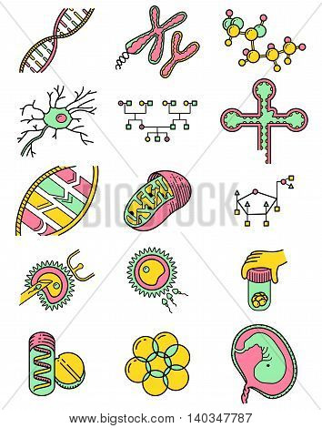 Vector simplicity science icons set with genetic and microbiological objects. Medical collection with DNA and RNA molecule neuron and embrio cells in vitro fertilization process Genetic Engineering