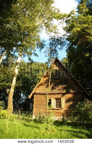 Wooden House In The Forest In The Summer