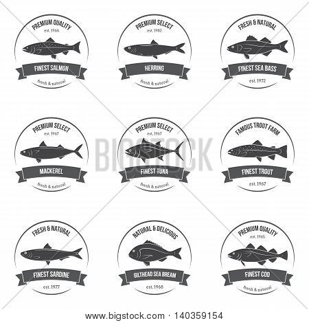 Vector Fish Silhouettes, Labels, Emblems. Salmon, Herring, Sea Bass, Mackerel, Tuna, Trout, Sardine,
