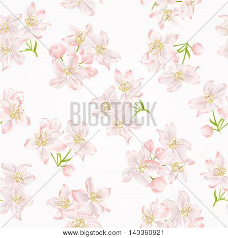 Seamless texture branch of apple tree with flowers vector illustration