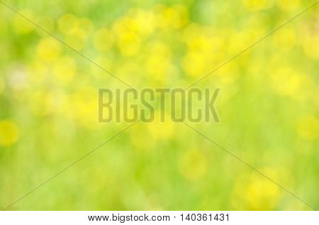 Abstract nature bokeh background - blur colorful bokeh. Natural blurred bokeh background from grass and yellow flowers