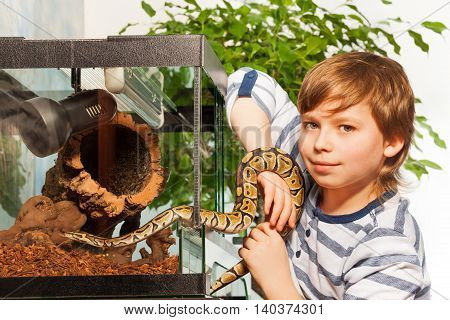 Young boy holding in hands small Royal python at the serpentarium and looking at camera