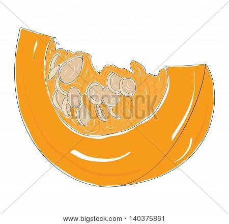 a slice of pumpkin on white background. vector illustration