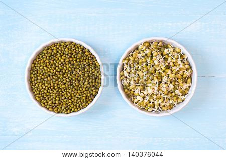 Mung beans dried and sprouted in a bowls on a blue wooden background
