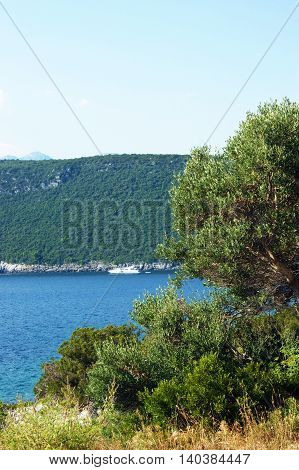 Nature in a quiet bay of the sea in Montenegro