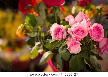 Close-up of pink roses at flower shop