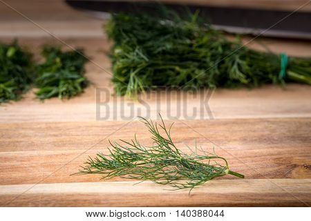 Twig Of Dill On A Wooden Board