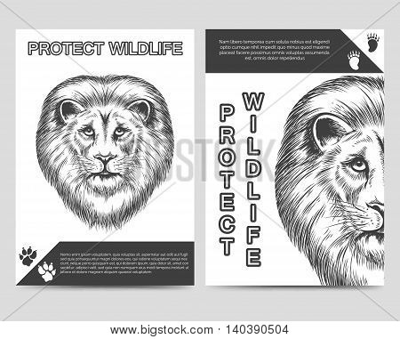 Protect nature brochure flyer template with lion and lion footprints A5foramt. Vector illustration