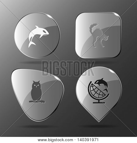 4 images: killer whale, cat, owl, globe and shamoo. Animal set. Glass buttons. Vector illustration icon.