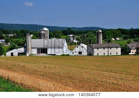 Lancaster County Pennsylvania - JUne 8 2015: Pristine Amish farm with silos barns and sheds surrounded by fields of young corn plants *