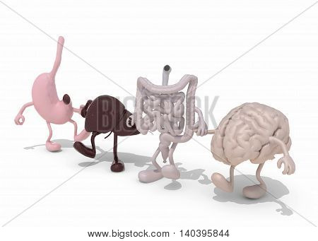 Human Organs With Arms And Legs Hand In Hand