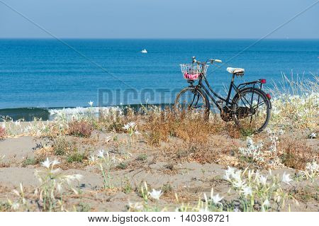 Bikecycle on the beach in the front beach