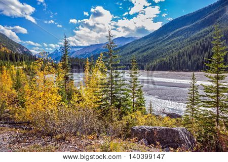 Autumn reduction of water in the river. The picturesque valley in Jasper National Park