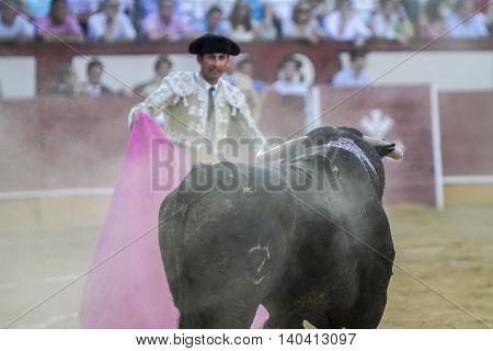 Cabra SPAIN September 5 2010: The Spanish Bullfighter bullfighting with the crutch in the Bullring of Pozoblanco Spain