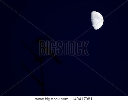 half moon and aerial in the night
