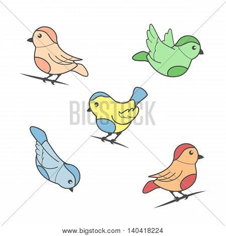 Bird image in color on a white background