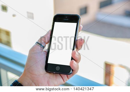 Hand Holding Blank Mobile Phone