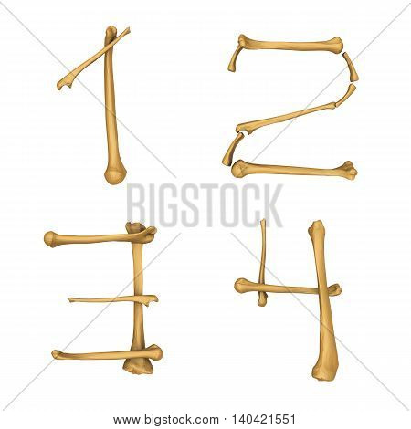3D illustration of Skeleton alphabet number 1-4 isolated on white background