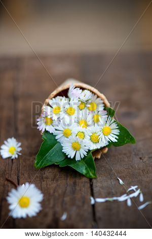 Daisies In Waffle Cone